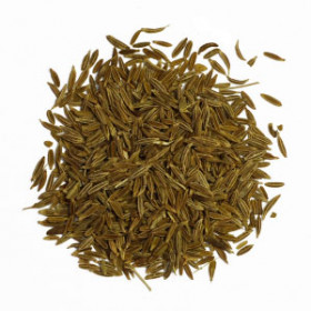 export and import egyptian Cumin