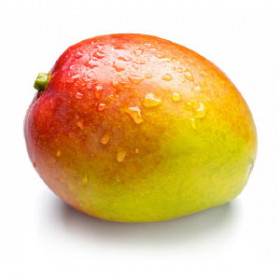 export and import egyptian Mango