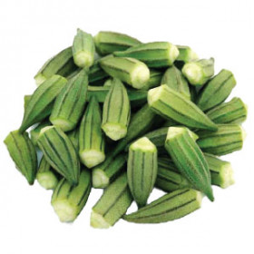 export and import egyptian Okra