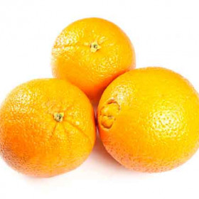 Export and Import Egyptian Orange