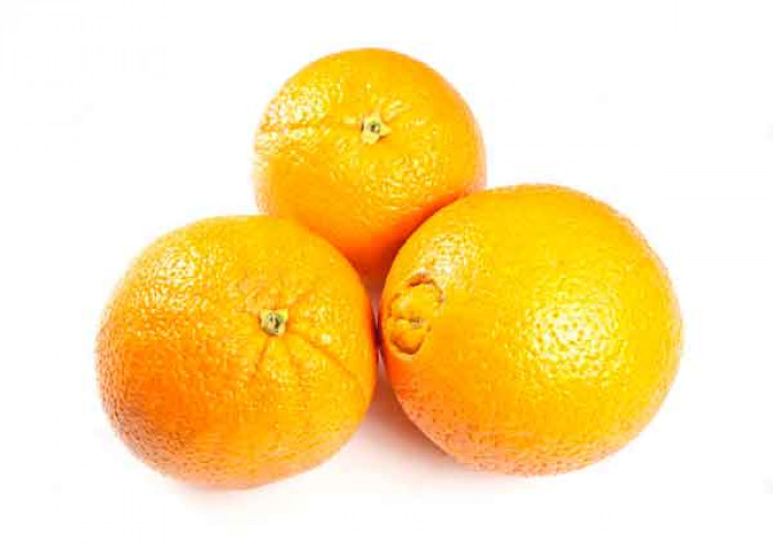 Egyptian Orange Navel