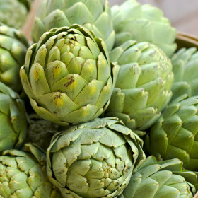 export and import egyptian Artichoke