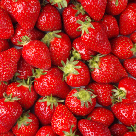 export and import egyptian Strawberries
