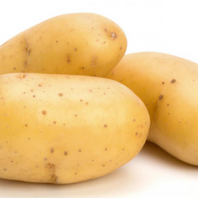 export and import egyptian potatos