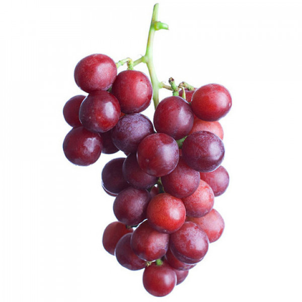 Egyptian Grapes (Flame)