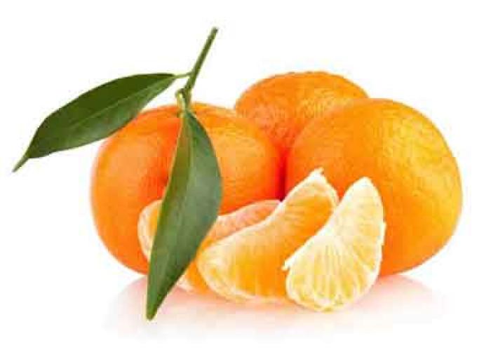 Egyptian Mandarin | Fresh Mandarin supplier Egypt | Egyptian Mandarin supplier | Fresh Egyptian Mandarin | High Quality Egyptian Mandarin supplier