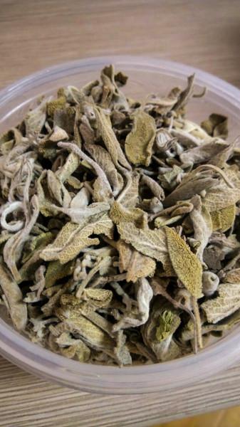 Egyptian Sage Leaves