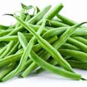Egyptian Green Beans | Fresh Green Beans supplier Egypt | Egyptian Green Beans supplier | Fresh Egyptian Green Beans | High Quality Egyptian Green Beans supplier